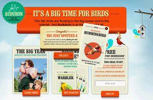 IMB_AudubonSociety1
