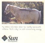 I2m_sun1